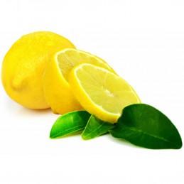 Citron jaune Primofiori