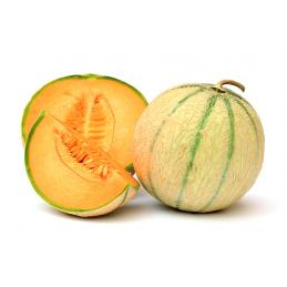 Melon Charentais Vert
