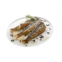 Sardines et Maquereaux